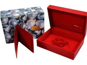 Rolex1 Watch Box 1